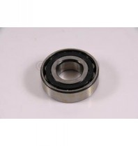 N204 Bearing - High Quality